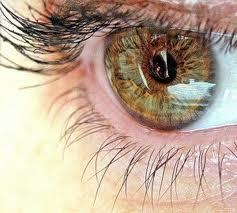 Тренируем глазки